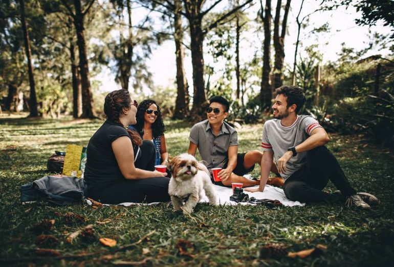 A group of friends having a picnic