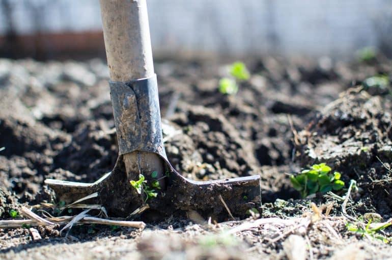 a shovel embedder in soil